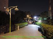 2014/1/11樹林大安花園夜市:DSCN0267 拷貝.jpg
