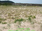 2008/7/12㊣卡蹓馬祖DAY2*遊北竿!:DSCF0520.jpg