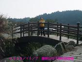 2009/11/7陽明山竹子湖吃飯踏青:DSCF7260.jpg