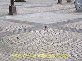 2008/7/7台北市政府出差一日遊:DSCF0179.jpg