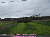 2009/1/27初二我在通霄天氣晴~飛牛牧場:DSCF2168 拷貝.jpg