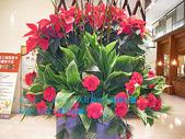 2007/12/2天母新光三越週年慶~瓦城:IMGP0030 拷貝.jpg