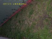 2007/2/21台北縣市流浪:IMGP0191拷貝.jpg