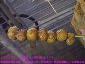 2008/2/24瘋狂七人幫香港行DAY3:咖哩魚丸