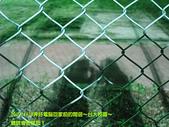 2009/4/29國人都叫好錄影&台大校園:影子