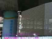 2008/6/28-新相機測試隨便拍:新店假日花市
