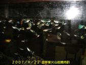 2007/9/22宜莘家火山岩烤肉趴:撈魚啦