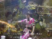 2007/10/28高島屋週年慶~餵魚秀:IMGP0196 拷貝.jpg