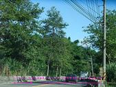 2010/8/20★桃園縣★龜山鄉/大溪☺:DSCF0234 拷貝.jpg