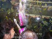 2007/10/28高島屋週年慶~餵魚秀:IMGP0200 拷貝.jpg