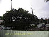 2007/2/21台北縣市流浪:IMGP0192拷貝.jpg