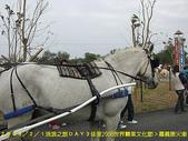 2008/2/1-2/3流浪之旅高雄&佳里:馬