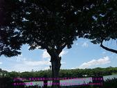2010/8/20★桃園縣★龜山鄉/大溪☺:DSCF0213 拷貝.jpg