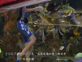 2007/10/28高島屋週年慶~餵魚秀:IMGP0217 拷貝.jpg