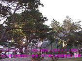 2008/2/1-2/3流浪之旅高雄&佳里:CIMG0181 拷貝.jpg