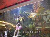 2007/10/28高島屋週年慶~餵魚秀:IMGP0195 拷貝.jpg