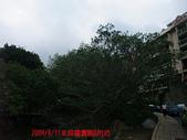 2009/8/11北投圖書館&附近:DSCF6561 拷貝.jpg