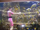 2007/10/28高島屋週年慶~餵魚秀:IMGP0204 拷貝.jpg