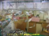 2007/9/22宜莘家火山岩烤肉趴:IMGP0085.jpg