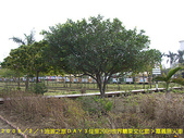 2008/2/1-2/3流浪之旅高雄&佳里:CIMG0561 拷貝.jpg
