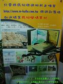 2008/7/12㊣卡蹓馬祖DAY2*遊北竿!:DSCF0438.jpg
