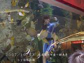 2007/10/28高島屋週年慶~餵魚秀:IMGP0199 拷貝.jpg