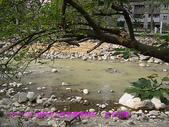 2007/12/08資訊中心青青農場烤肉:IMGP0068 拷貝.jpg