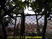 2007/9/22宜莘家火山岩烤肉趴:IMGP0071.jpg
