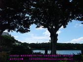 2010/8/20★桃園縣★龜山鄉/大溪☺:DSCF0215 拷貝.jpg