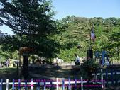 2010/8/20★桃園縣★龜山鄉/大溪☺:DSCF0237 拷貝.jpg
