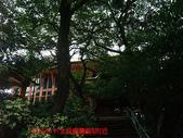 2009/8/11北投圖書館&附近:DSCF6546 拷貝.jpg