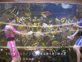 2007/10/28高島屋週年慶~餵魚秀:IMGP0203 拷貝.jpg