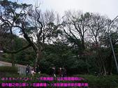 2009/1/31天氣晴朗父女同遊陽明山!:DSCF2075 拷貝.jpg
