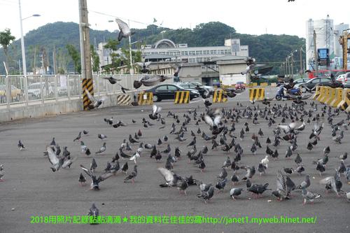 DSC01741 拷貝.jpg - 2018/8/4基隆網美之旅