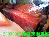 2009/9/5佳佳玩咖東區美食團:DSCN5390 拷貝.jpg