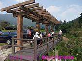 2009/11/7陽明山竹子湖吃飯踏青:DSCF7263.jpg