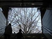 20080322 私の every w-inds. day:DSC01703.JPG