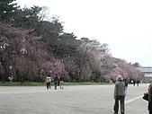 20080322 私の every w-inds. day:DSC01740.JPG