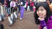 20140618北海道:DSC_2949.JPG
