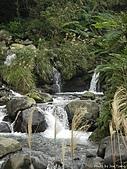 磺溪頭山:IMGP3751.jpg