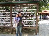 日本_沖繩_2015年228連假:IMG_1284.JPG