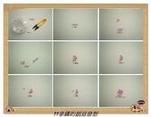 珠流感(串珠表格做法):串珠做圖法-小花