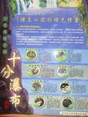 天燈:DSC00679.JPG