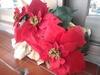 20131209【301小蘿蔔】聖誕氣氛
