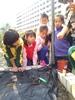 20140317【301小蘿蔔-自然】小白菜移栽開心農場 (5).jpg
