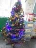 20131210【301小蘿蔔】閃亮聖誕樹 感謝游老師傳承的聖誕樹 還有勇儒媽媽贊助的LED聖誕燈泡