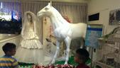 2013_0818 西門新娘馬匹沙發:1751721405.jpg