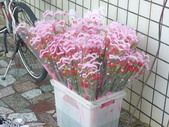 中華民國一百年慶祝母親節+曾祖母91大壽:P1010808.JPG