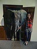 201103 「奇幻‧不思議」:日本3D幻視藝術畫展 (台北場):P1150639.jpg