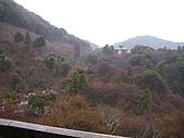 2010 0131-0207 京都:照片 021